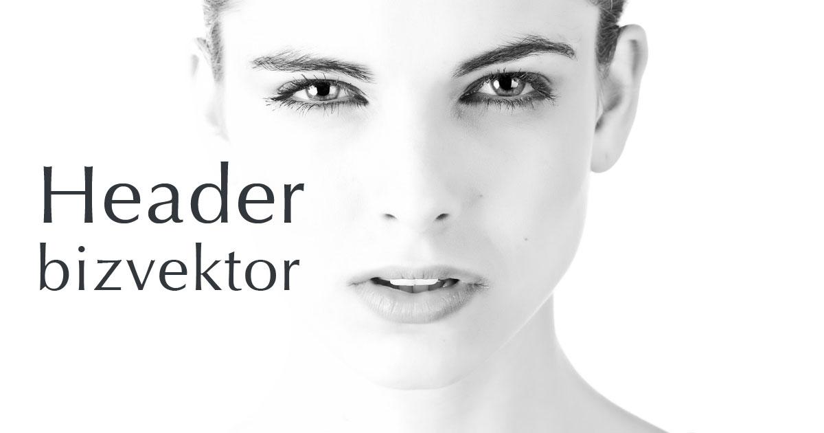 WordPressビズベクトルでヘッダー画像を設定する